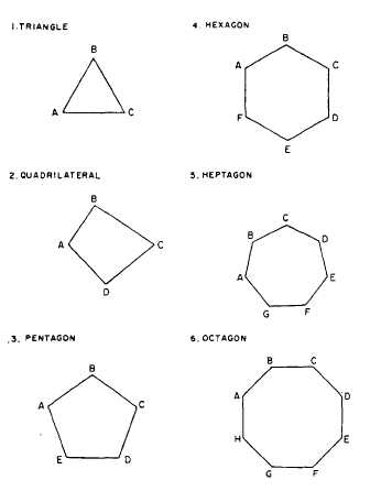 Number Names Worksheets pentagon hexagon heptagon octagon : DETERMINING AREAS